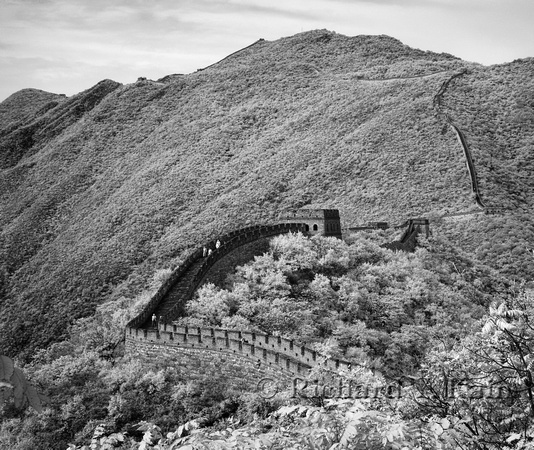 Great Wall Study #3